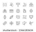 set of human internal organs... | Shutterstock .eps vector #1366183634