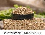 seeds green buckwheat on a dark ... | Shutterstock . vector #1366397714