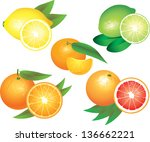 citrus fruits photo realistic... | Shutterstock .eps vector #136662221