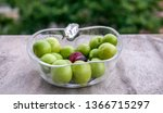 heap of green sourish plums in... | Shutterstock . vector #1366715297