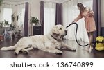 Young woman cleaning big dog - stock photo