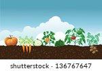 vegetable garden. jpg   Shutterstock . vector #136767647