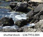 seaside landscape  rocky...   Shutterstock . vector #1367951384