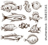 set of fishes isolated on a... | Shutterstock .eps vector #136815161