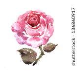 Watercolor Pink Rose