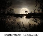 big moon over the wild lake | Shutterstock . vector #136862837