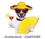 Summer Cocktail Dog Cooling Of...