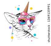 oriental shorthair cat in a... | Shutterstock .eps vector #1369135991