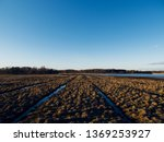 birdwatching spot in helsinki ... | Shutterstock . vector #1369253927