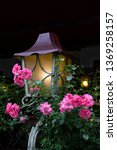 lantern  entwined with roses. | Shutterstock . vector #1369258157
