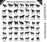 Big Set Of 49 Different Dogs ...