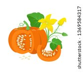 orange pumpkin vegetable with... | Shutterstock .eps vector #1369584317