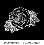 beautiful hand drawn rose... | Shutterstock .eps vector #1369684034