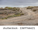 photo picture of a dirt road... | Shutterstock . vector #1369766621