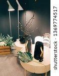 ecology theme interior.   Shutterstock . vector #1369774517