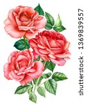 Stock photo bouquet of red roses on an isolated white background watercolor hand drawing botanical painting 1369839557