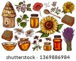 hand drawn vector honey set... | Shutterstock .eps vector #1369886984