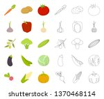 different kinds of vegetables... | Shutterstock .eps vector #1370468114