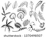 collection of  leaves.abstract... | Shutterstock .eps vector #1370498507