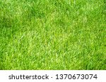 urban photography  a lawn is an ... | Shutterstock . vector #1370673074