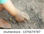 child holding soil in hands in... | Shutterstock . vector #1370674787