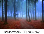 mystic forest with red leaves... | Shutterstock . vector #137080769