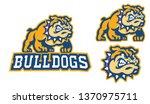 Bulldog Mascot Sport Logo In...