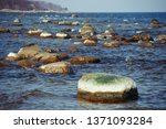 Large Half White Stones In The...