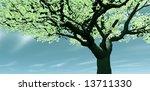 beautiful scenery   Shutterstock . vector #13711330