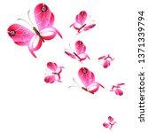beautiful pink butterflies... | Shutterstock . vector #1371339794