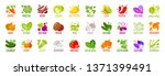 big set of vegetables nuts... | Shutterstock .eps vector #1371399491