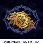 beautiful hand drawn rose... | Shutterstock .eps vector #1371453464