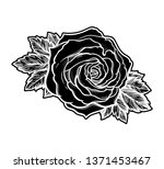 beautiful hand drawn rose... | Shutterstock .eps vector #1371453467