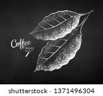 black and white vector chalk... | Shutterstock .eps vector #1371496304