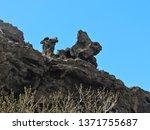 Unique Volcanic Rock Formations ...