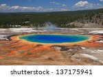 colorful grand prismatic spring ... | Shutterstock . vector #137175941