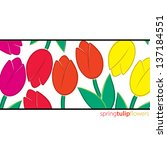 all occasion tulip card in... | Shutterstock .eps vector #137184551