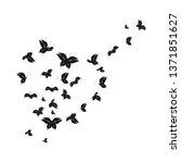silhouette beautiful... | Shutterstock .eps vector #1371851627