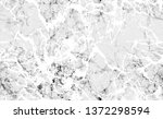 grungy stripes seamless texture.... | Shutterstock .eps vector #1372298594
