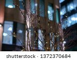 branch entwined with lights at... | Shutterstock . vector #1372370684