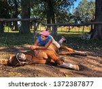 Horse Whisperer Laying A Horse...