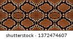snake skin pattern texture... | Shutterstock .eps vector #1372474607
