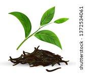 fresh and dry vector green tea... | Shutterstock .eps vector #1372534061