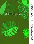 leaves of tropical plants....   Shutterstock .eps vector #1372539584