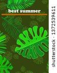 leaves of tropical plants....   Shutterstock .eps vector #1372539611