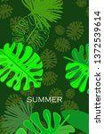 leaves of tropical plants....   Shutterstock .eps vector #1372539614