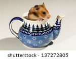 Hamster In A Colorful Old Jug...