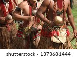 Brazilian Indians Of The Patax...