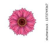 brite pink magenta color with... | Shutterstock . vector #1373749367