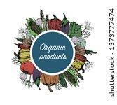 organic vegetables. natural... | Shutterstock .eps vector #1373777474